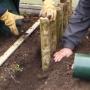 Laying hazel stump path edge ii