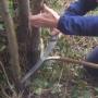 Cutting out pleach hinge