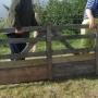 Moving sheep hurdles