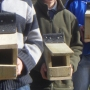 Group nestboxes completed i