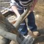 Cleaving chestnut for garden border hurdles i
