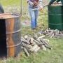 Drums & chestnut cutting_