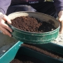 Sieving compost