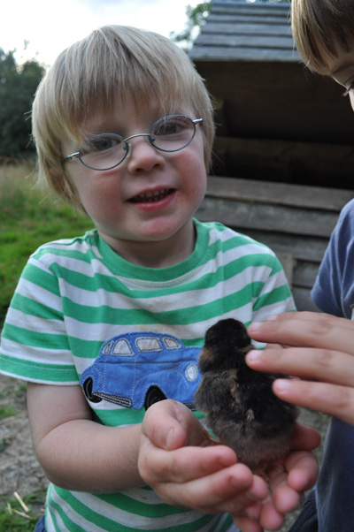 Enjoying the experience of a newborn chick cupped in your hands!