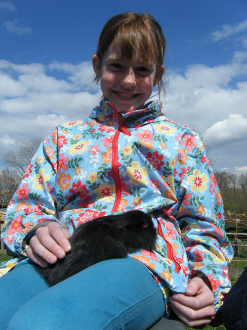 Holding baby bunnies i