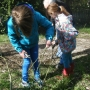 Harvesting willow for use in 'creature craft'.i