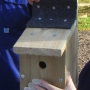 Finished nestbox