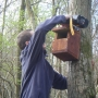 Fixing nestbox to tree