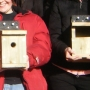 Group nestboxes completed