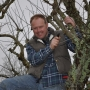 Winter pruning of dead wood & crossing branches